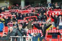 «Спартак»-«Арсенал». 9.11.2014, Фото: 25