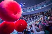Туляков приглашают на новогоднее представление «Ёлка в цирке», Фото: 55
