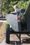 Празднование 69-й годовщины победы в Великой Отечественной войне на площади Победы. Тула, Фото: 12