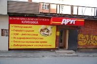 Советы ветеринаров: забота о здоровье питомцев осенью, Фото: 1