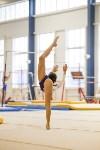 Спортивная гимнастика в Туле 3.12, Фото: 182