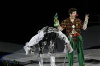 В Тульском цирке прошла премьера аква-шоу, Фото: 43