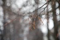Мартовский снег в Туле, Фото: 65
