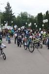 Велопарад в Туле, Фото: 104