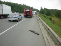 ДТП на трассе М2 Крым. 11 июля 2014 год., Фото: 14