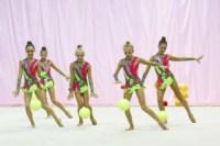 Межрегиональный турнир по художественной гимнастике — «Осенний вальс». 6-7 сентября 2014, Фото: 21