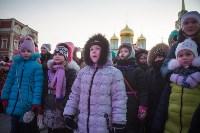В Тульском кремле открылась новогодняя елка, Фото: 42