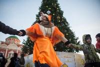 В Тульском кремле открылась новогодняя елка, Фото: 21