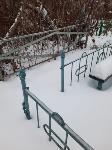 Кто устроил беспредел на кладбище Горняк, Фото: 7