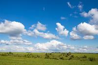 Тишина, солнце и бесконечный простор: 90 красивых фото с родины слонов – Одоевского района, Фото: 2