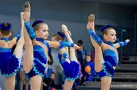 III Всебелорусский открытый турнир по эстетической гимнастике «Сильфида-2014», Фото: 1