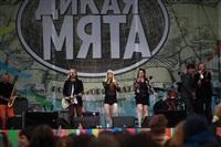 """""""Дикая Мята - 2014"""", Фото: 26"""