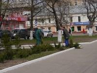 Высадка деревьев в Советском районе Тулы , Фото: 2