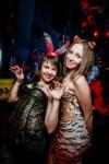 Хэллоуин-2014 в Премьере, Фото: 25