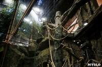 Тульский областной Экзотариум, Фото: 7