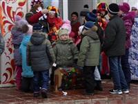 Масленичные гулянья в Плавске, Фото: 18