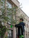 В Туле появилось Пасхальное дерево, Фото: 8