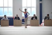 Соревнования по спортивной гимнастике на призы Заслуженных мастеров спорта , Фото: 60