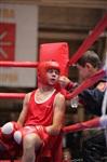 XIX Всероссийский турнир по боксу класса «А», Фото: 14