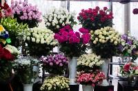 Ассортимент тульских цветочных магазинов. 28.02.2015, Фото: 67