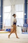 Спортивная гимнастика в Туле 3.12, Фото: 168