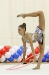 Художественная гимнастика. «Осенний вальс-2015»., Фото: 137