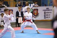Международный турнир по каратэ EurAsia Cup, Фото: 3