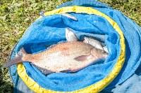 Фестиваль по ловле рыбы поплавочной удочкой. 27 августа 2016, Фото: 12