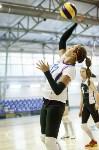 Тульские волейболистки готовятся к сезону., Фото: 19