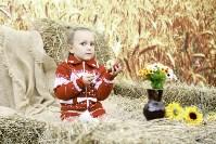 Праздник урожая в Новомосковске, Фото: 8