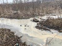 В тульском Заречье в Упу сливают канализацию, Фото: 2