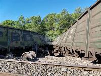 В Тульской области грузовой поезд сошел с рельсов, Фото: 21