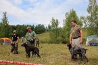 Выставка охотничьих собак под Тулой, Фото: 103