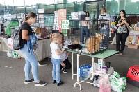 III благотворительный фестиваль помощи животным, Фото: 3