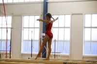Спортивная гимнастика в Туле 3.12, Фото: 150
