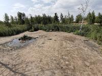 В Кондуках прошла акция «Вода России»: собрали более 500 мешков мусора, Фото: 20