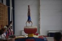 Соревнования по спортивной гимнастике на призы Заслуженных мастеров спорта , Фото: 27