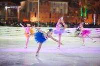 Туляки отметили Старый Новый год ледовым шоу, Фото: 6