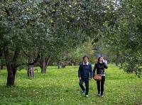 """""""Яблочная история"""" в """"Ясной Поляне"""", Фото: 27"""