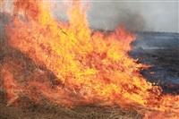 """Возгорание сухой травы напротив ТЦ """"Метро"""", 7.04.2014, Фото: 8"""