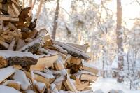 Снежное Поленово, Фото: 40