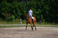 В Ясной поляне стартовал турнир по конному спорту, Фото: 97