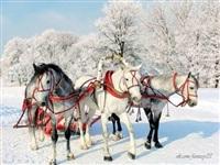 Русская зима, Фото: 5