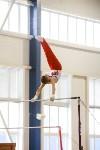 Спортивная гимнастика в Туле 3.12, Фото: 13