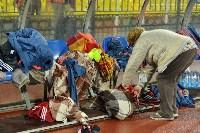 «Арсенал» Тула - «Спартак-2» Москва - 4:1, Фото: 218