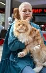 """Выставка """"Пряничные кошки"""" в ТРЦ """"Макси"""", Фото: 61"""
