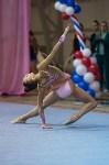 Соревнования по художественной гимнастике 31 марта-1 апреля 2016 года, Фото: 141
