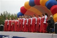 День Тульской области, Фото: 12