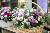 Цветы , Фото: 12