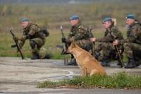 Оружейная Россия, 08.10.2015, Фото: 122